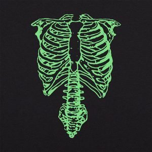 Ribcage and spine bones
